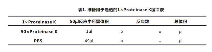 一步法Tunel细胞凋亡检测试剂盒(荧光法-红光)-2.png