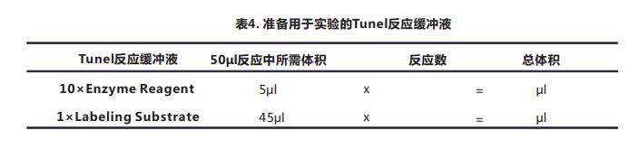 一步法Tunel细胞凋亡检测试剂盒(荧光法-红光)-5.png