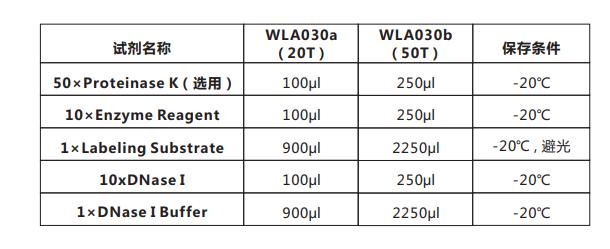 Tunel细胞凋亡检测试剂盒(荧光法-绿光)-1.png