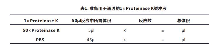 Tunel细胞凋亡检测试剂盒(荧光法-绿光)-2.png