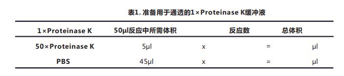 Tunel细胞凋亡检测试剂盒(显色法)029--2.png