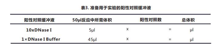 Tunel细胞凋亡检测试剂盒(显色法)029--4.png