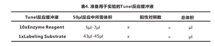 Tunel细胞凋亡检测试剂盒(显色法)029--5.png